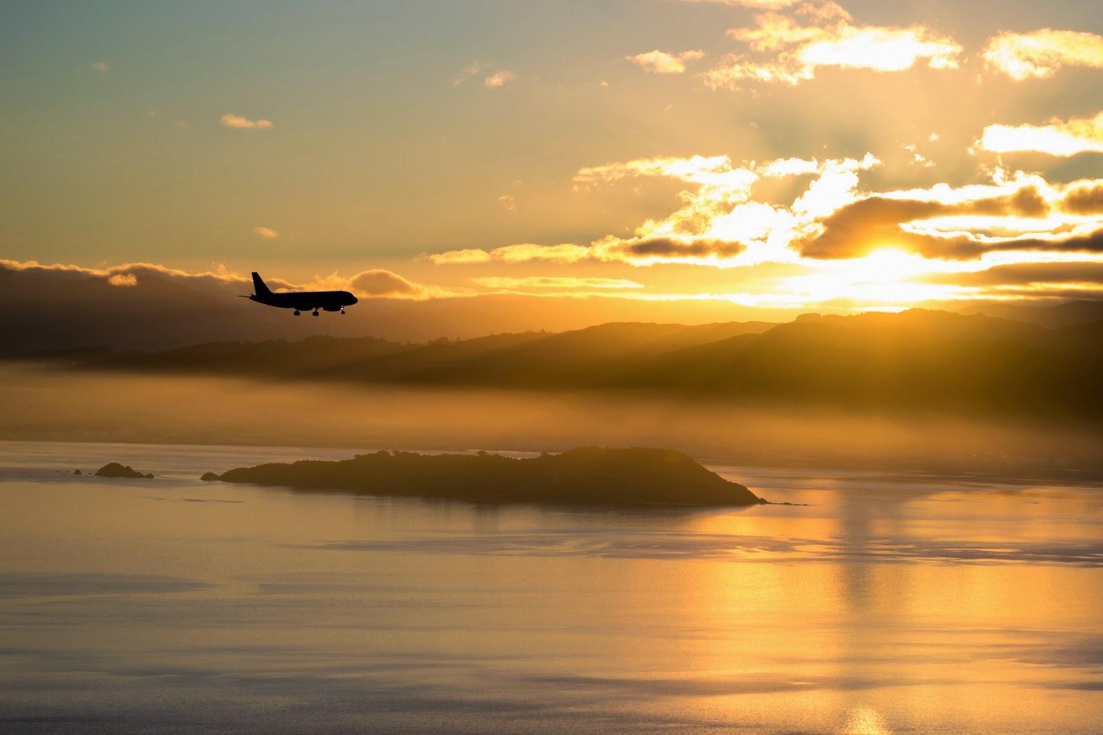 plane landing through sunrise wellington